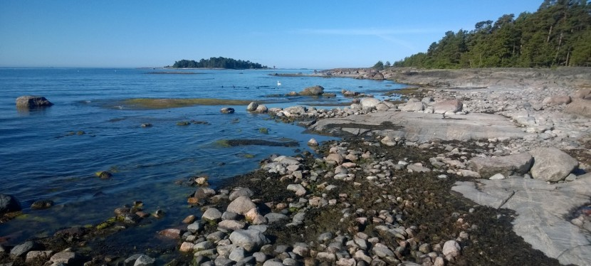 Merellisen Espoon helmiä: Iso Vasikkasaari jaGåsgrund