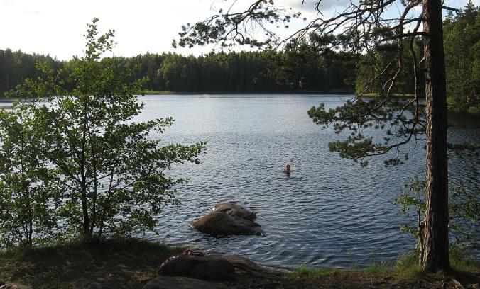 Myllyjärvi2